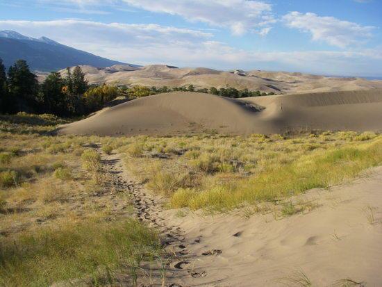 pretty dunes