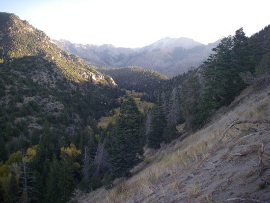 cold creek drainage
