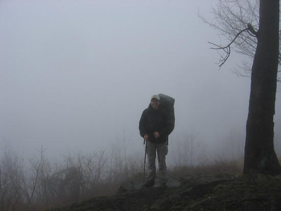 A foggy April view from Sharp Top (Old Loggers Path)