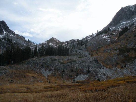 Meadow below Deer Lake