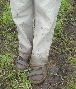 muddy hurricane IIs
