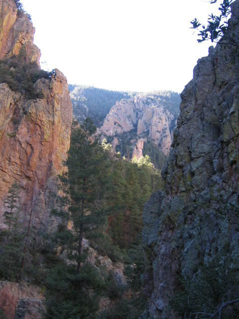South Fork Whitewater Creek, Gila Wilderness, NM