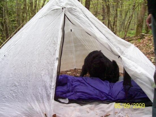 2 person cuben shelter