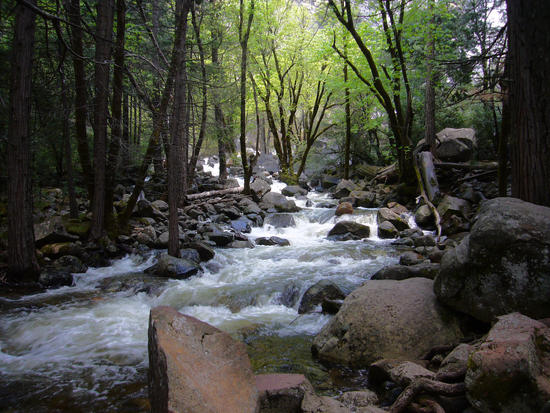 Bridalveil Creek - Spring Time