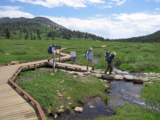 Crossing Ophir Creek