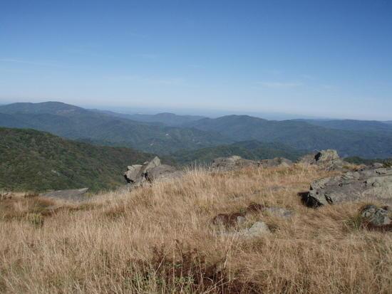 Roan Highlands
