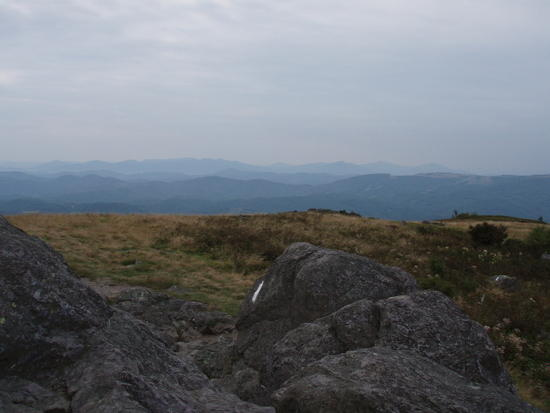 View from Buzzard Rock