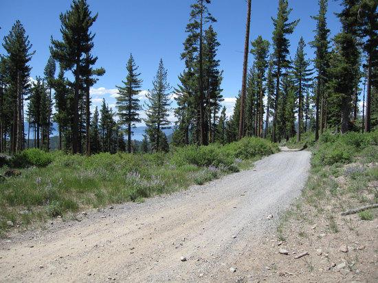 Peak Road