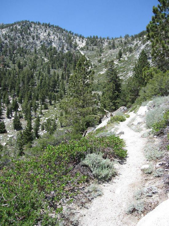 Climbing Up Towards Monument Pass