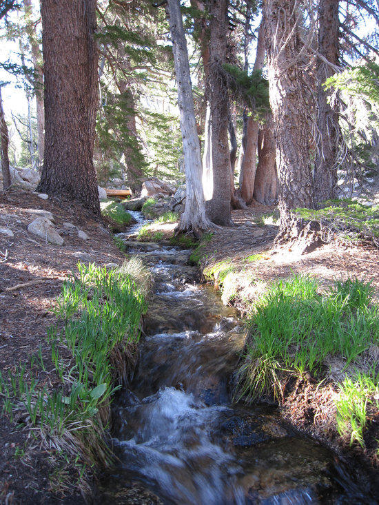 Unnamed Creek that Flows from Freel Peak