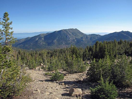 Trimmer Peak