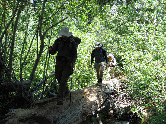 Crossing a Stream Just Before Big Meadow