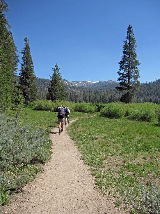 Heading into Big Meadow