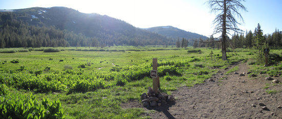 When the Tahoe Rim Trail and the Pacific Crest Trail Meet