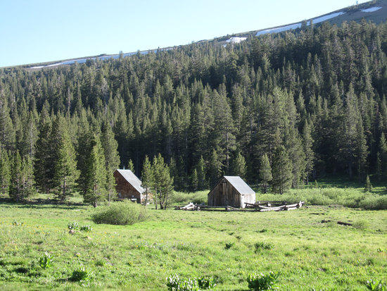 Some Sort of Winter Shelters?