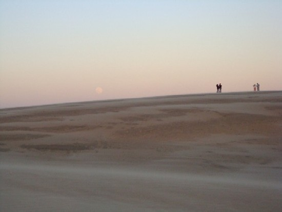 Moonrise over dune