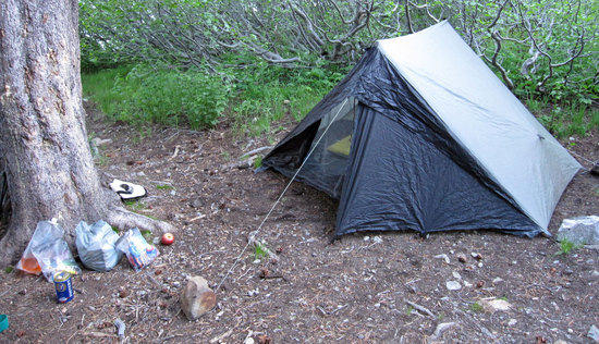 Jay's Change of Shelter