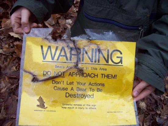 Bear warning destoried, by bears?
