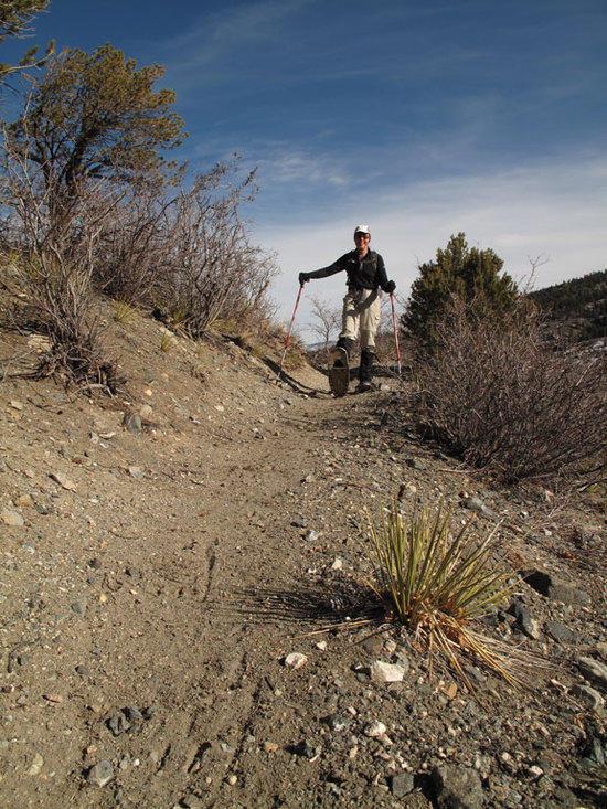 Dry Trail
