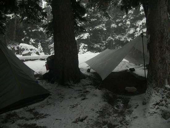 MLD Solo Tarp in snow on PCT