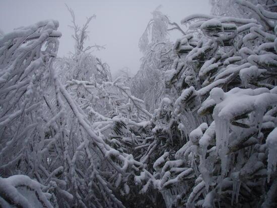 Ice Tray Mtn