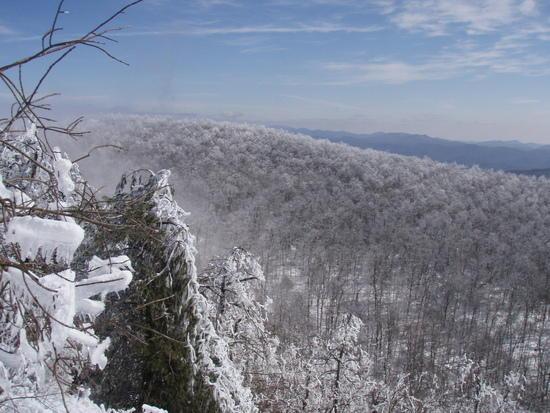 Powell Mountain