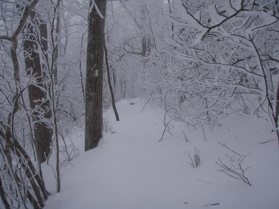 The AT near Deep Gap in Snow