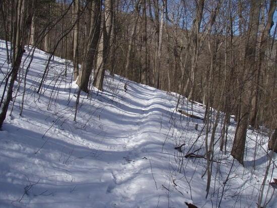 Snow-Rich Mtn