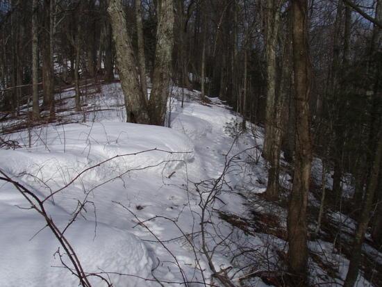 Deep Snow Drifts