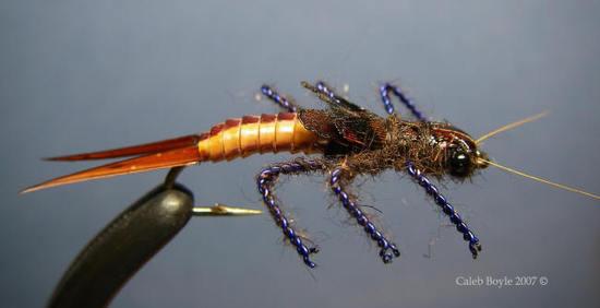Art Fly