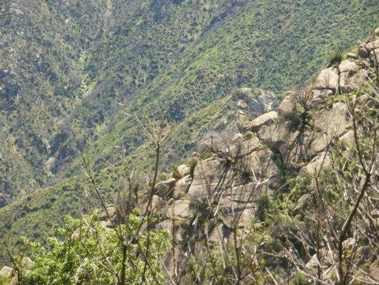 Tassajara gorge