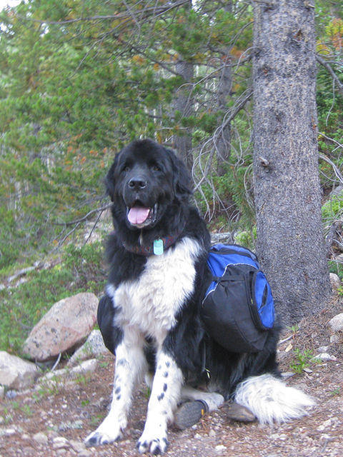 Got my pack on, let's go hiking!