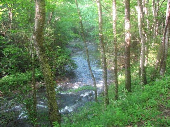 Noland Creek