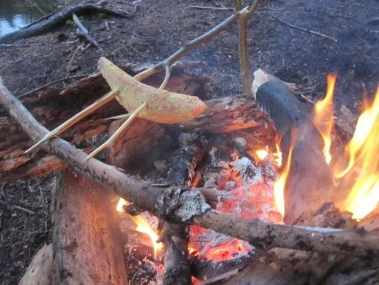 Fish Fire