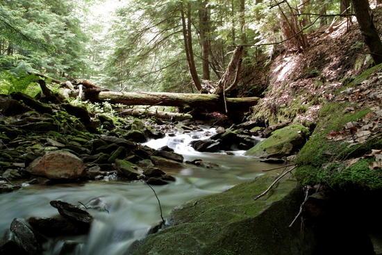 western pa mountain stream