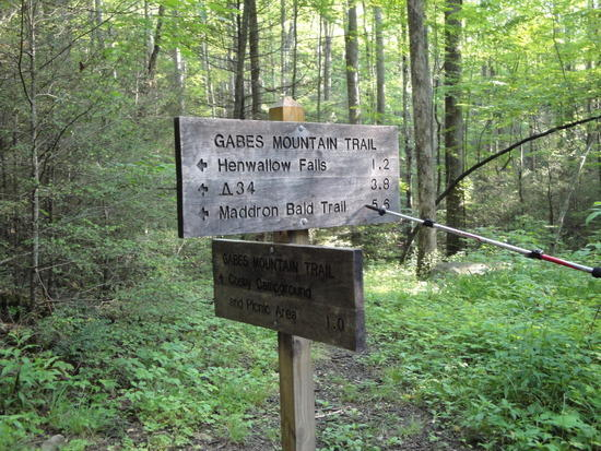 Maddron Bald trail Sign