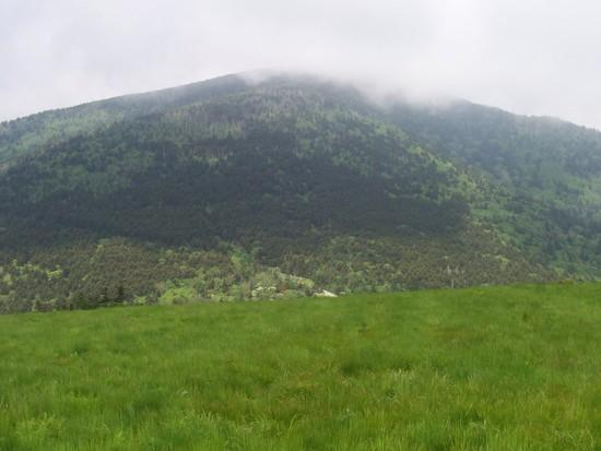 Roan Mtn. as viewed from Little Hump Mtn.