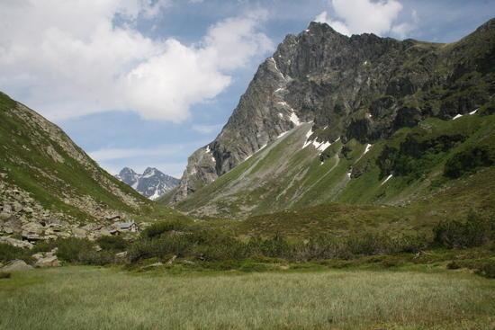 alpenhorn