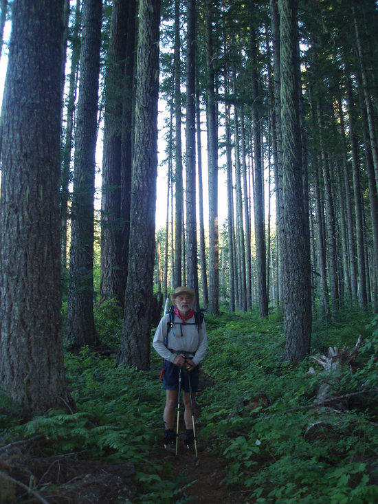 Ed in beautiful old growth forest