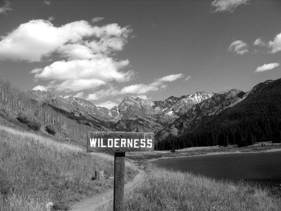 Wilderness?