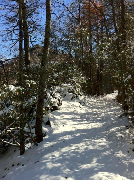 snow trail