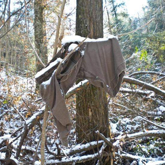 Remnants of last hiker on East Bee Branch Trail