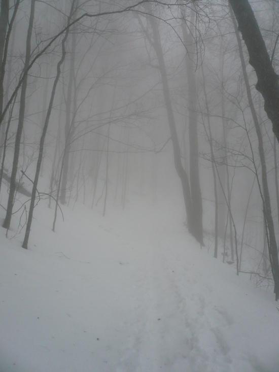 Snokies Snow 4