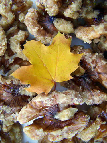 maple sugared walnuts