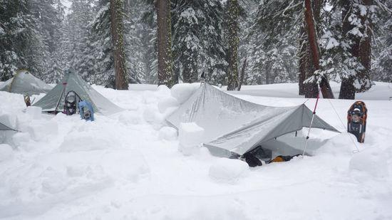 adams shelter