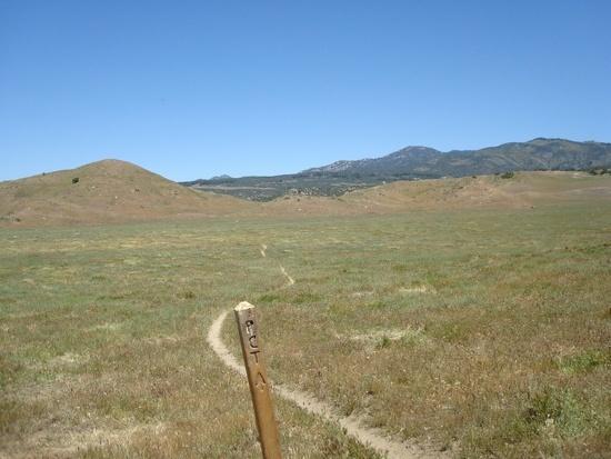 Rolling hills near Warner