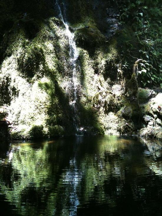Waterfall on the Waimanu trail