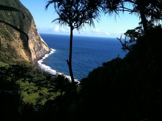 Waimanu valley in the sun