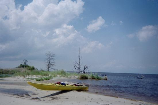 Resting at the spit on the entrance to the Albemarle Sound