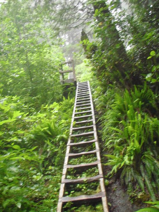 A long climb